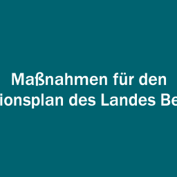 Weiße Schrift auf dunkelgrünem Grund: Maßnahmen für den Aktionsplan des Landes Berlin